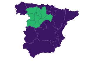 Afammer Castilla y León