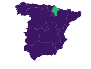 Afammer Navarra
