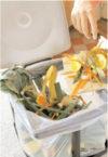 Piensa globalmente, actúa localmente innovando en la gestión de tus residuos
